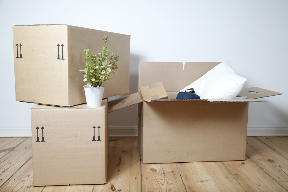 Best Packers & Movers in Bangalore
