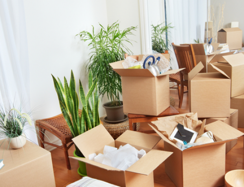 Best Packers and Movers in Electronic City Banagalore