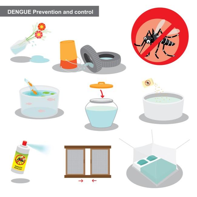 Dengue prevention NoBroker