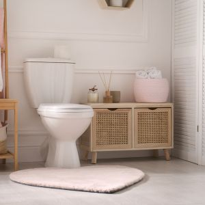 The importance of Vastu for your Toilet