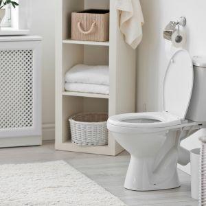 Toilet Vastu for an East-Facing House