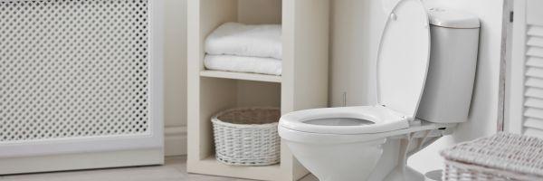 Vastu For Toilets And Bathrooms
