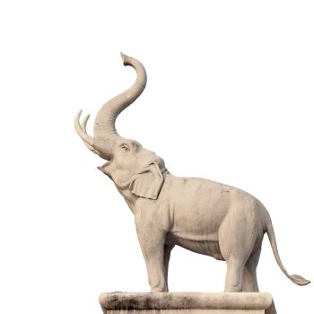 What Is The Significance Of An Elephant's Trunk Position