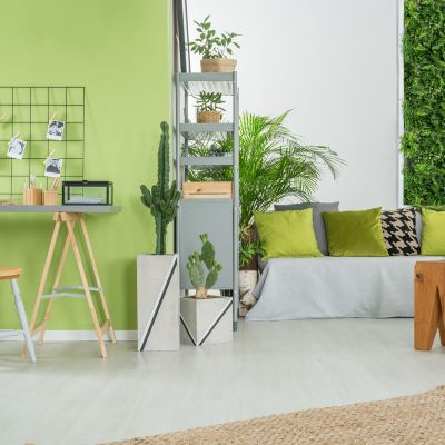 Light Green Paint Colours For The Living Room To Exude Warmth And Prosperity